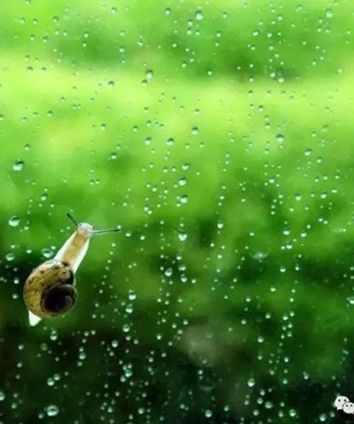 铝包木窗防水